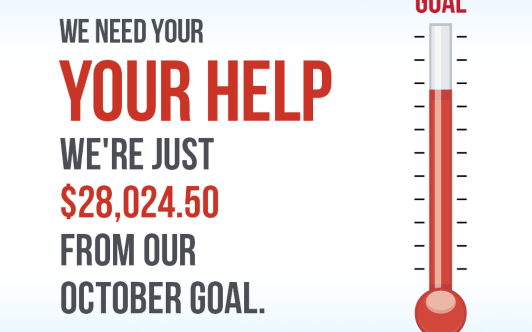 We're almost there, help us reach our goal!